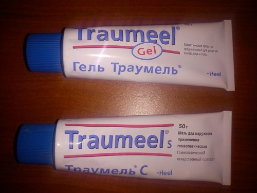 gel_Cel_T_i_gel_Traumel_S_3-500x375