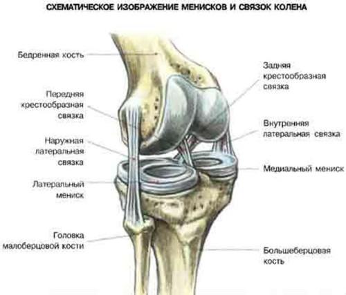 сильно болят тазобедренные суставы